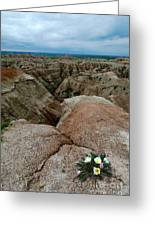Wildflowers In The Badlands Greeting Card