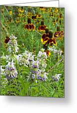 Wildflowers Seven Greeting Card