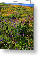 Wildflowerscape Greeting Card