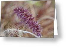 Wildgrass Collage Greeting Card