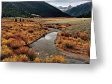Wildhorse Creek Greeting Card