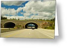 Wildlife Crossing Greeting Card