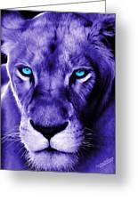 Wildlife Lion 12 Greeting Card