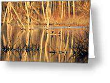 Wildlife Of The Bottoms Greeting Card