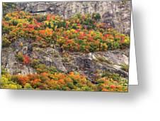 Willard Cliffs Greeting Card
