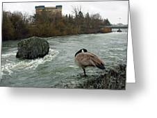 Willie Willey Rock - Riverfront Park - Spokane Greeting Card
