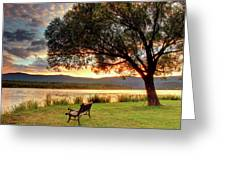 Willow Bay Greeting Card