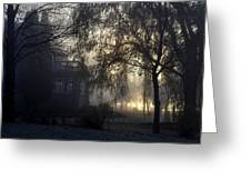 Willow In Fog Greeting Card