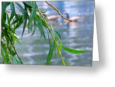 Willow Over The Water Greeting Card