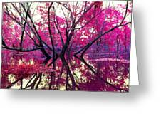 Willow Pink Greeting Card