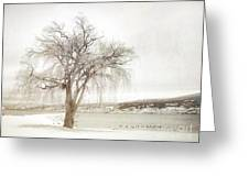 Willow Tree In Winter Greeting Card