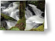 Wilson Creek #17 Greeting Card