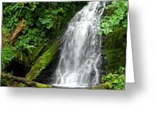 Wilson River Hwy Waterfall Greeting Card