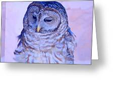 Wind Blown Owl  Greeting Card