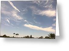 Wind Currents Over Palms Greeting Card