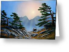 Windblown Pines Greeting Card