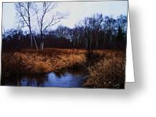 Winding Creek 2 Greeting Card