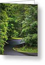 Winding Road Bluestone State Park West Virginia Greeting Card