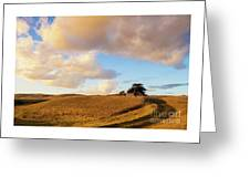 Winding Road Leads To A Lone Tree Greeting Card