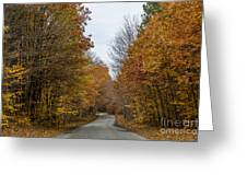 Winding Road Of Awenda Greeting Card