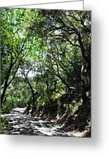 Winding Road Santa Ynez Mountains Greeting Card