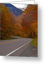 Winding Road Greeting Card by Robert  Torkomian