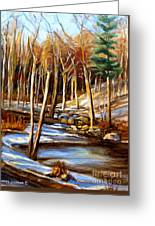 Winding Stream Greeting Card