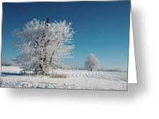 Windmill In The Frost Greeting Card