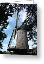 Windmill Through The Trees Greeting Card