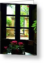 Window And Roses Greeting Card