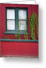 Window And Vines Greeting Card