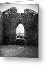 Window At Fuerty Church Roscommon Ireland Greeting Card by Teresa Mucha