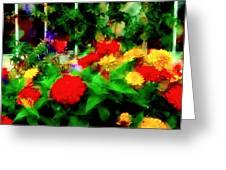 Window Box Of Flowers Greeting Card