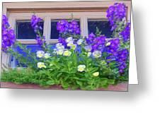 Window Box With Pansies Greeting Card