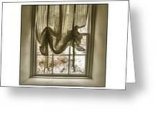 Window Dressing Greeting Card