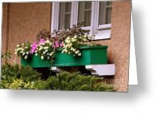 Window Flower Box Greeting Card