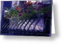 Window Flowerbox Greeting Card