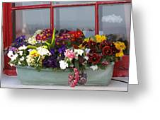 Window Flowers Greeting Card