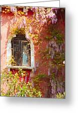 Window In Venice With Wisteria Greeting Card