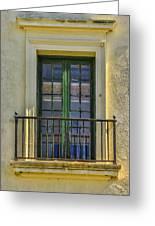 Window Of Amelia Greeting Card