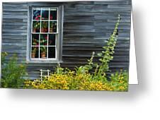 Window Of Olson House Greeting Card