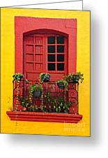 Window On Mexican House Greeting Card by Elena Elisseeva