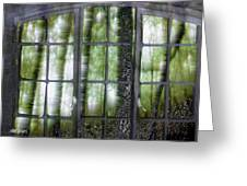 Window On The Woods Greeting Card