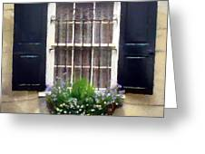 Window Shutters And Flowers II Greeting Card