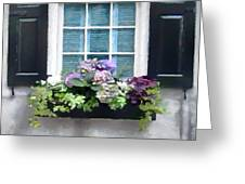 Window Shutters And Flowers Vi Greeting Card