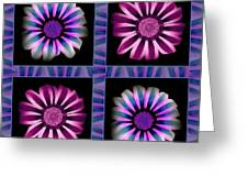 Windowpanes Brimming With  Moonburst Stripes Of Flowers - Scene 5 Greeting Card