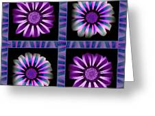 Windowpanes Brimming With  Moonburst Stripes Of Flowers - Scene 6 Greeting Card