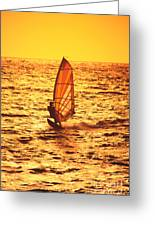 Windsurfer At Sunset Greeting Card