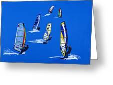 Windsurfers Greeting Card