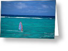 Windsurfing In Clear Ocea Greeting Card